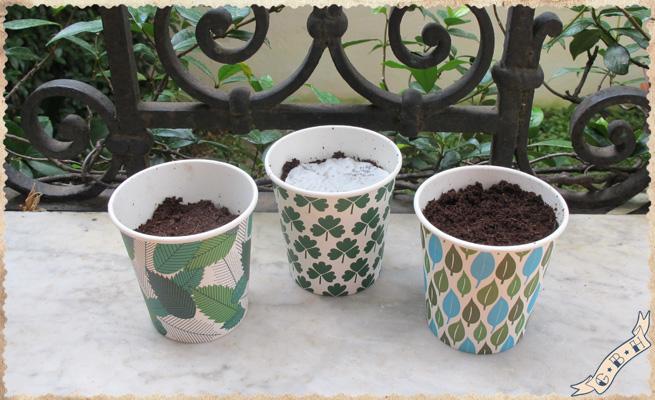 froer-plant-pot